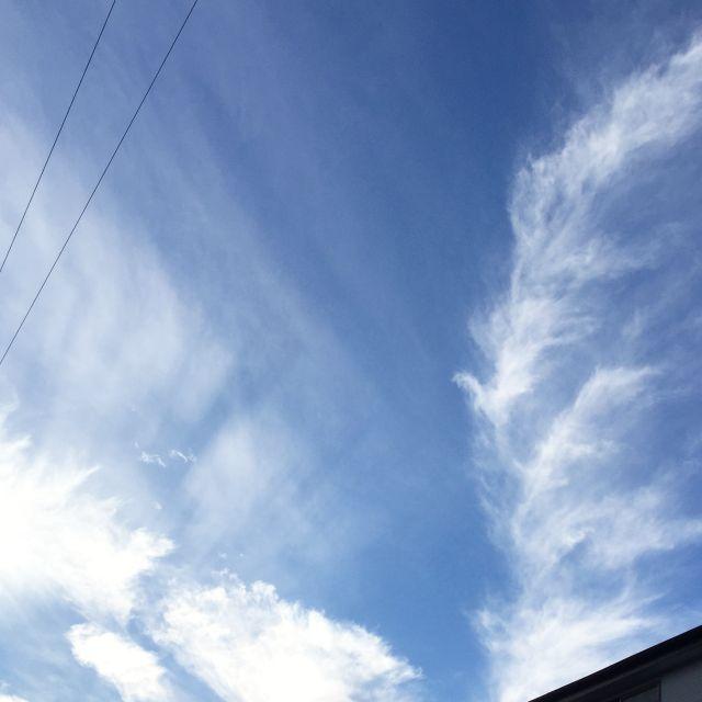 2009_4.jpg